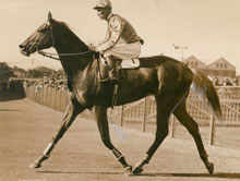 Peter Pan and jockey Jim Pike