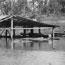 Sawmill under flood - Wingham, NSW