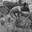 Loading fodder for Maitland flood areas