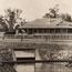 Irrigation Murrumbidgee, N.S.W.