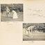 Page 5 - Album 25, 4th November 1900 - 7th April 1901