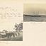 Page 13 - Album 25, 4th November 1900 - 7th April 1901