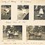 Page 29 - Album 25, 4th November 1900 - 7th April 1901